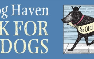 Easy to Use Fundraising Software For Your Dog Walk